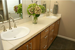 Modern House Plan Master Bathroom Photo 06 - Eton Sound Contemporary Home  011D-0341 | House Plans and More