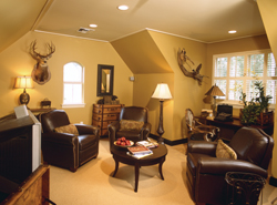 rustic bonus room